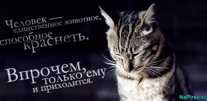 http://img1.liveinternet.ru/images/attach/c/4/81/948/81948951_7909071711021953.jpg