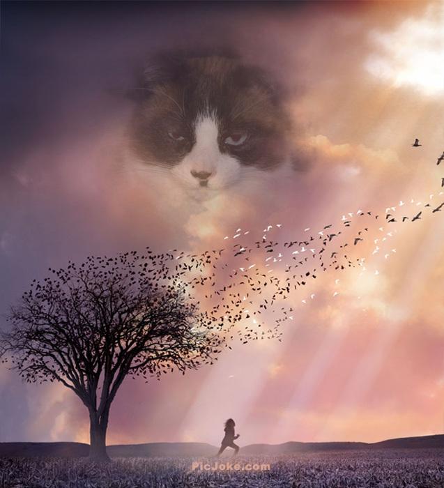 Алис в раю (637x700, 133Kb)