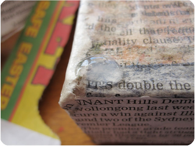 newspapercanvas_0012_IMG_3130 (640x480, 84Kb)