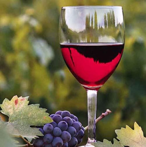 вино (501x506, 48Kb)