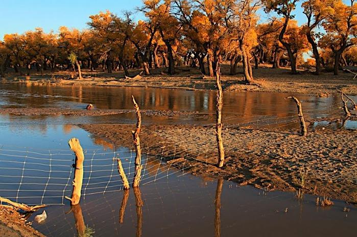 Геологический парк пустыни Алашань 88427