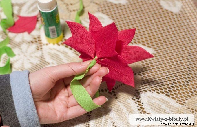 Рождественский цветок как сделать из бумаги