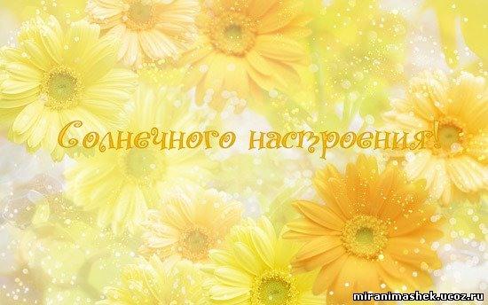 82174719_solnechnogo_nastroeniya_jpg.jpg