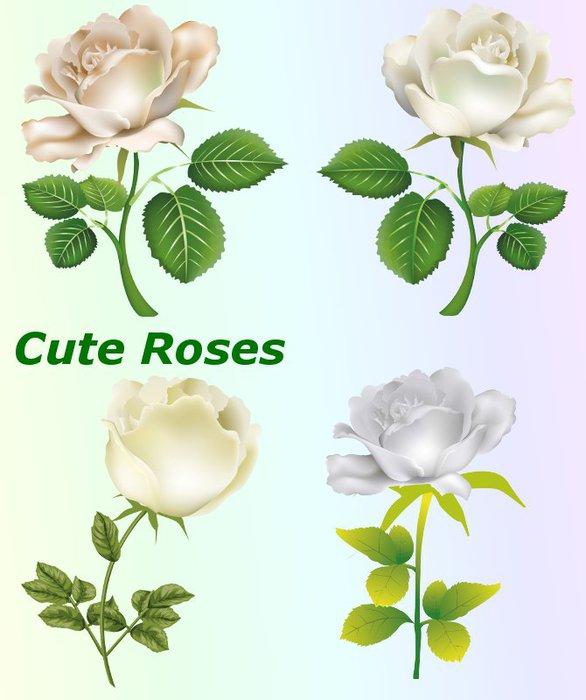 3291761_01Cute_Roses (586x700, 56Kb)