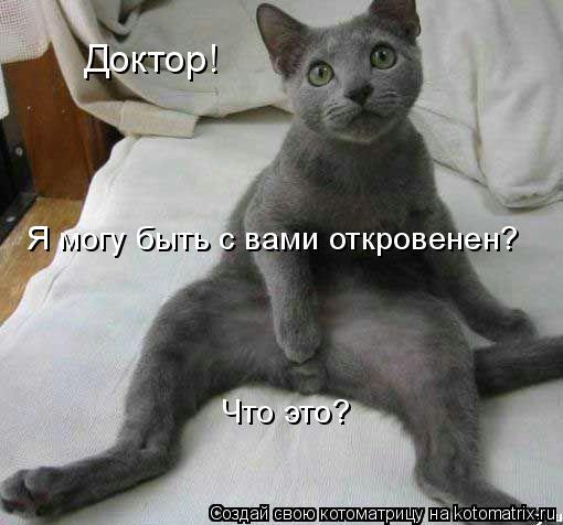 80718853_doktor_kotomatrica (510x476, 35Kb)