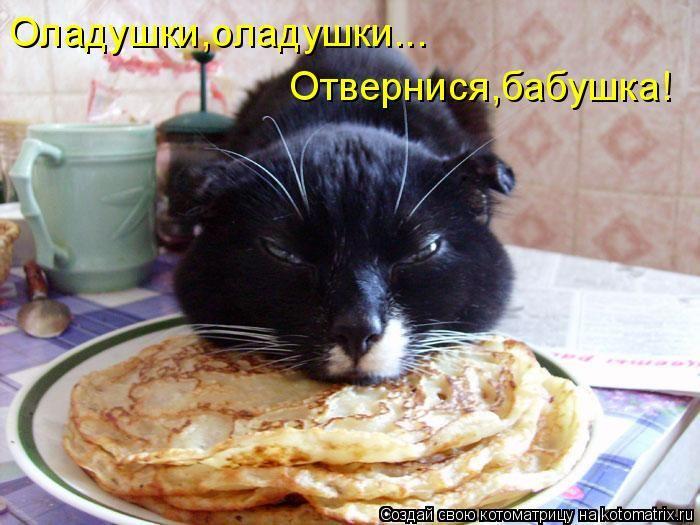 80718868_oladushki_kotomatrica (700x525, 67Kb)