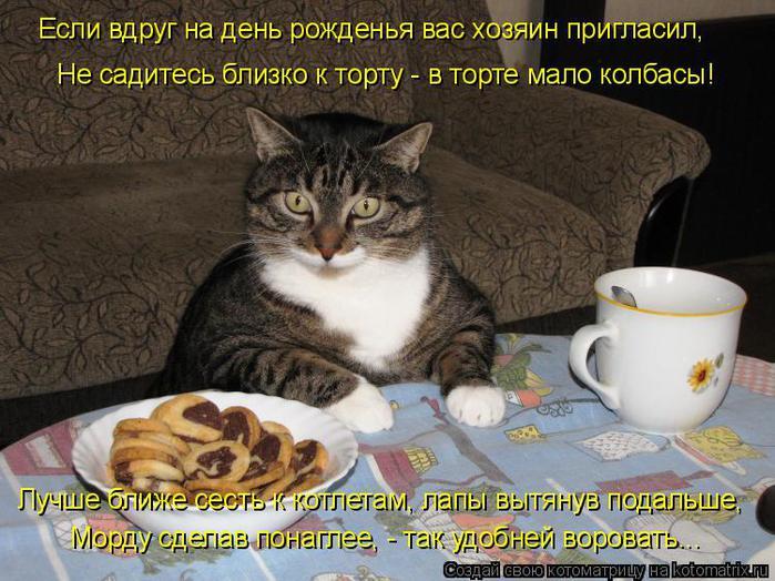 kotomatrix_11 (700x524, 75Kb)