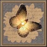 Превью borboletas (69) (600x600, 101Kb)