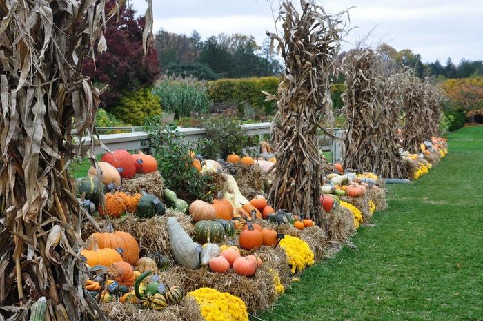 Сады Лонгвуда, Пенсильвания, США. 90462