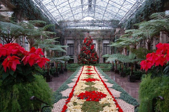 Сады Лонгвуда, Пенсильвания, США. 46231