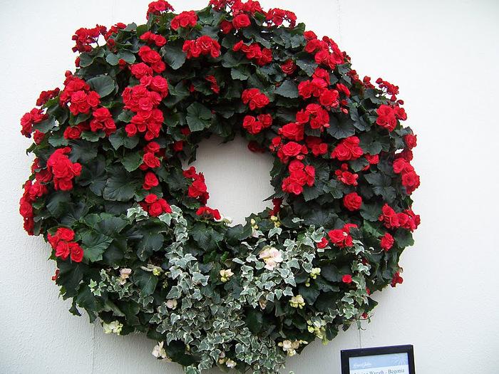 Сады Лонгвуда, Пенсильвания, США. 67868