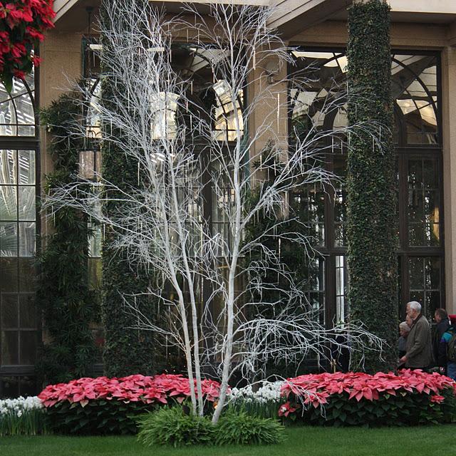 Сады Лонгвуда, Пенсильвания, США. 10336