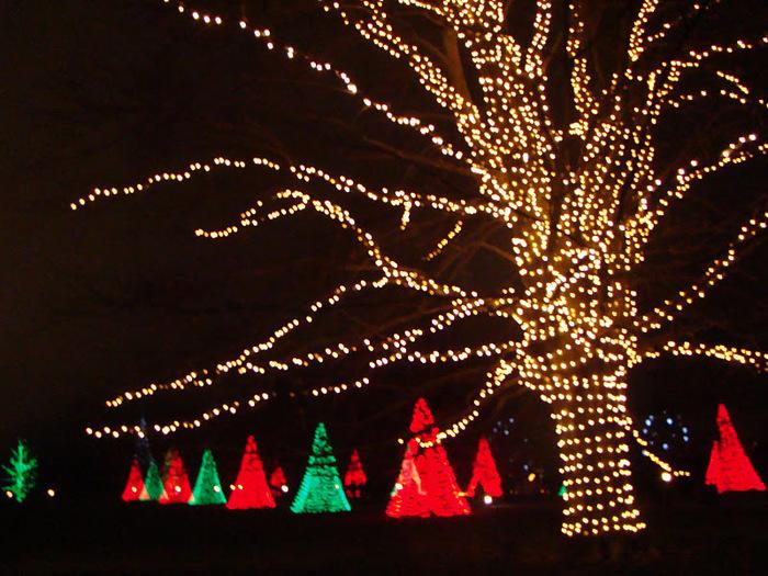 Сады Лонгвуда, Пенсильвания, США. 66424