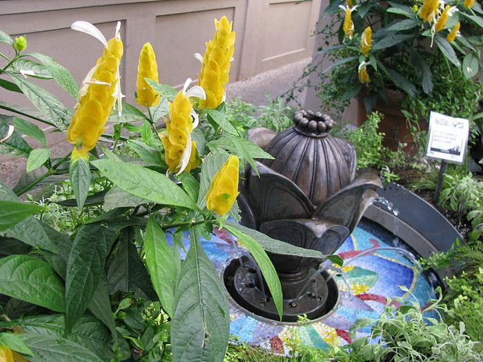 Сады Лонгвуда, Пенсильвания, США. 28205
