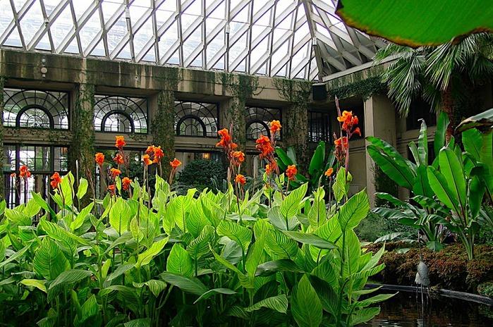 Сады Лонгвуда, Пенсильвания, США. 35960
