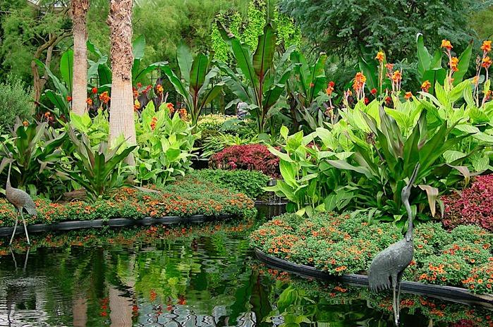 Сады Лонгвуда, Пенсильвания, США. 82343