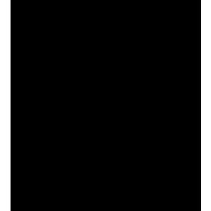 2 (300x300, 40Kb)