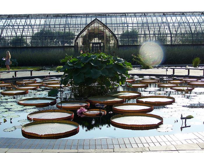 Сады Лонгвуда, Пенсильвания, США. 15033