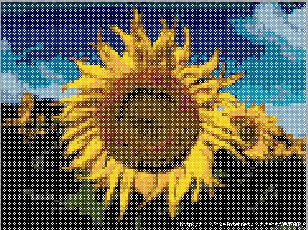 3937664_sunflo (605x453, 452Kb)