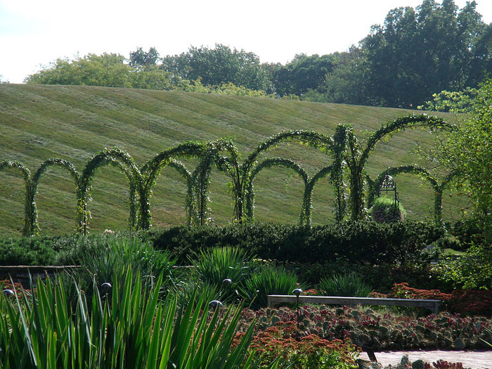 Сады Лонгвуда, Пенсильвания, США. 61948