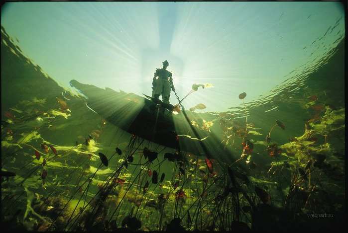 Тайны моря