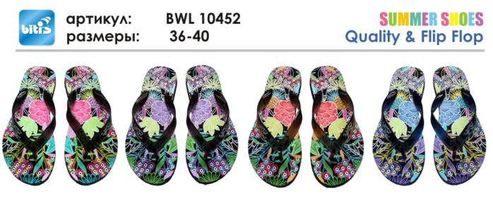 BWL 10452 (700x285, 266Kb)