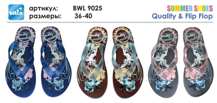 BWL 9025 (700x332, 295Kb)