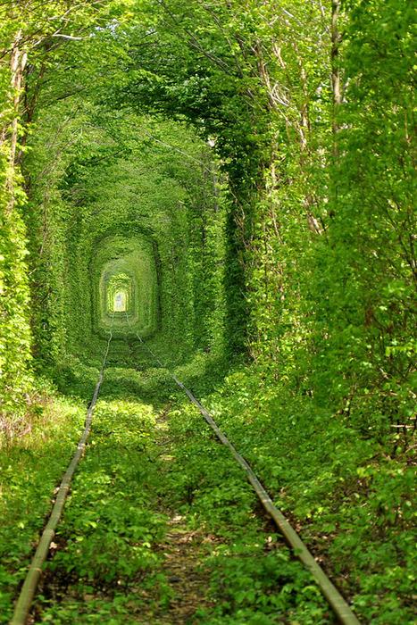 тоннель любви2 (467x700, 251Kb)