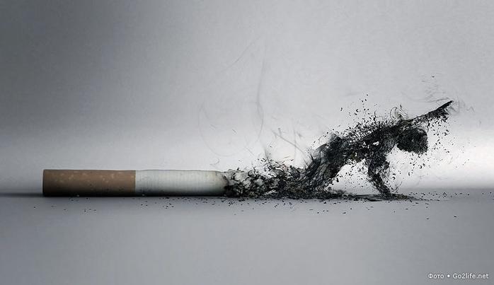 1326664108_the_smoke_by_lucaszoltowski (700x403, 126Kb)
