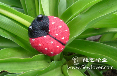 ladybug (450x291, 37Kb)