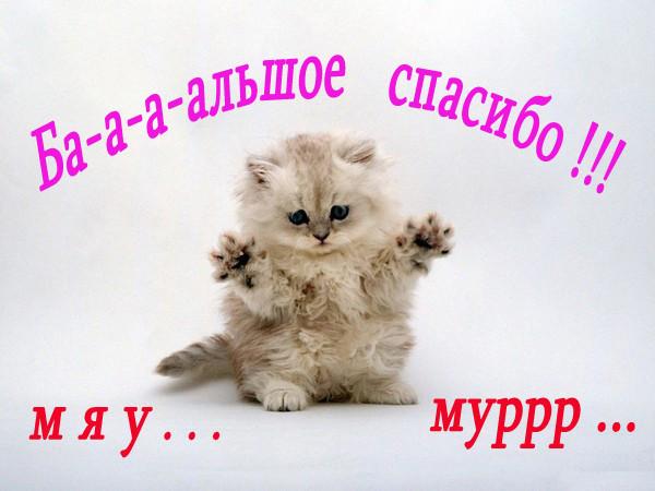 77125409_ppppppppp_22 (600x450, 75Kb)