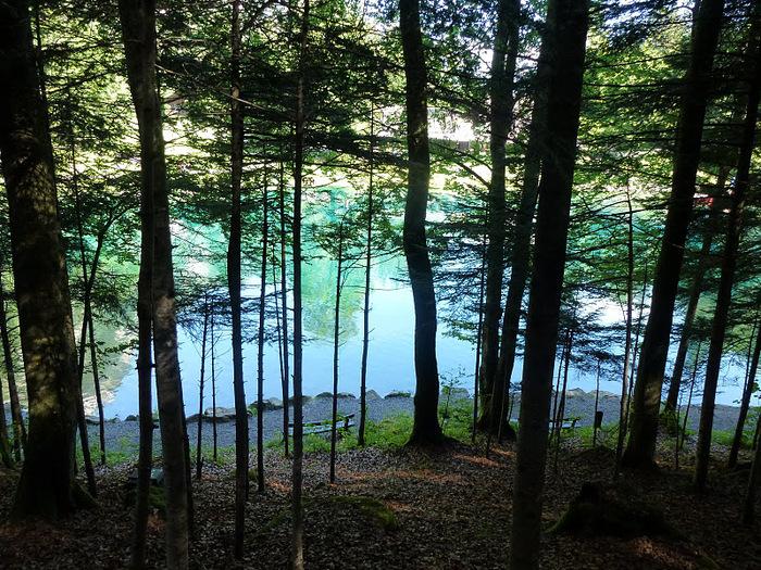 На холодно-синем стекле воды - Blausee 21540