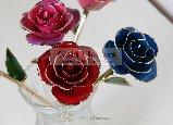 Золотая роза (159x115, 7Kb)