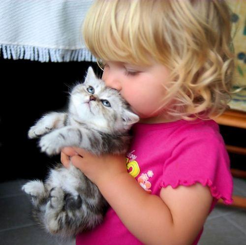 4080226_Pic_Kittygirl (500x498, 38Kb)