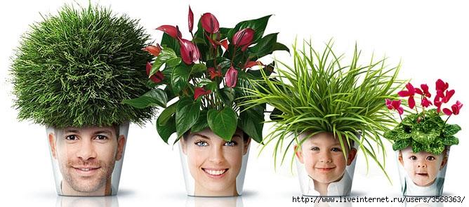 flower-pots-by-good-creative-designscene-net-05 (668x295, 168Kb)