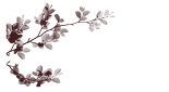 defne 34e (155x85, 5Kb)