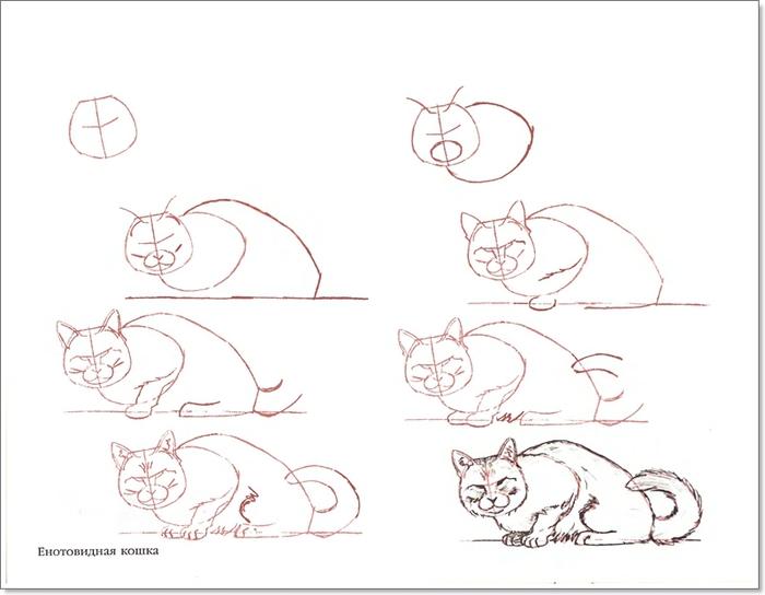 cat00009 (700x544, 134Kb)