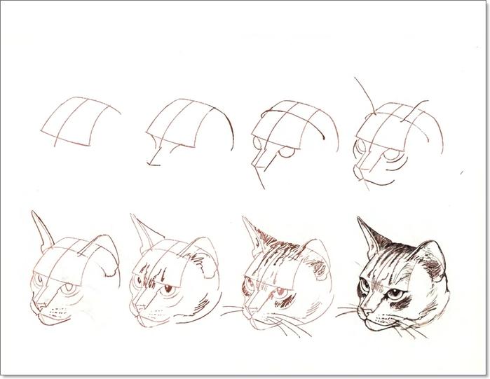 cat00024 (700x541, 127Kb)