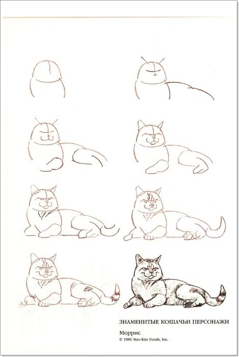 cat00035 (469x700, 115Kb)