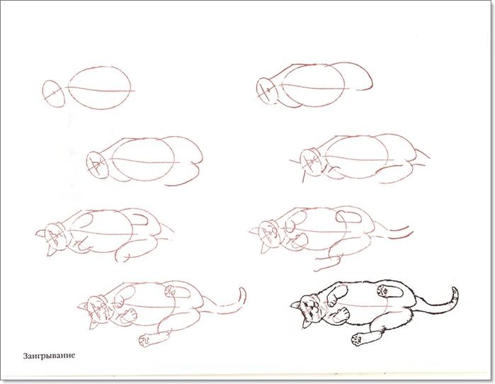 cat00053 (700x542, 113Kb)