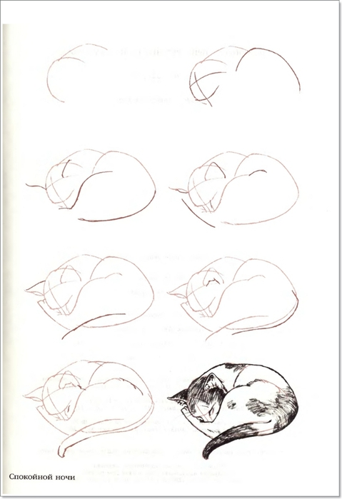 cat00056 (479x700, 110Kb)