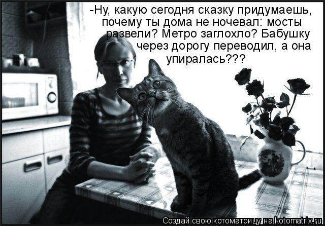 Котоматрица прикольные фото котов 6 (640x446, 63Kb)
