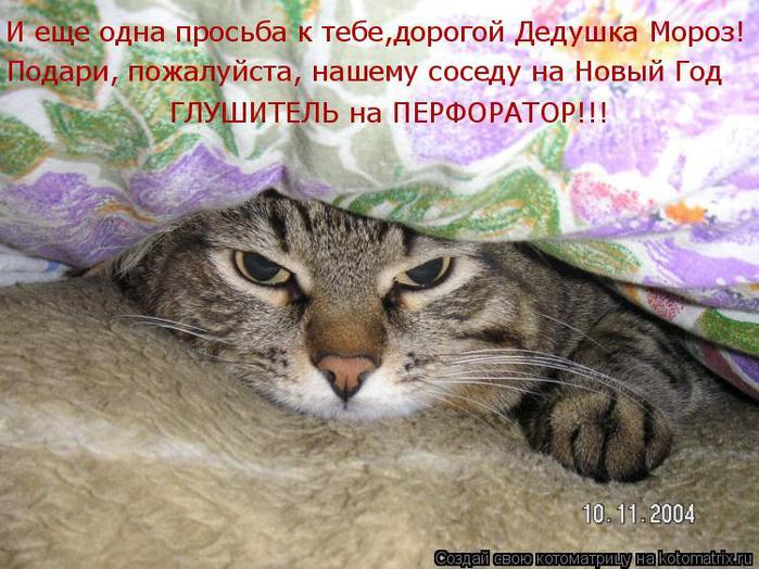 Котоматрица прикольные фото котов 14 (700x524, 77Kb)