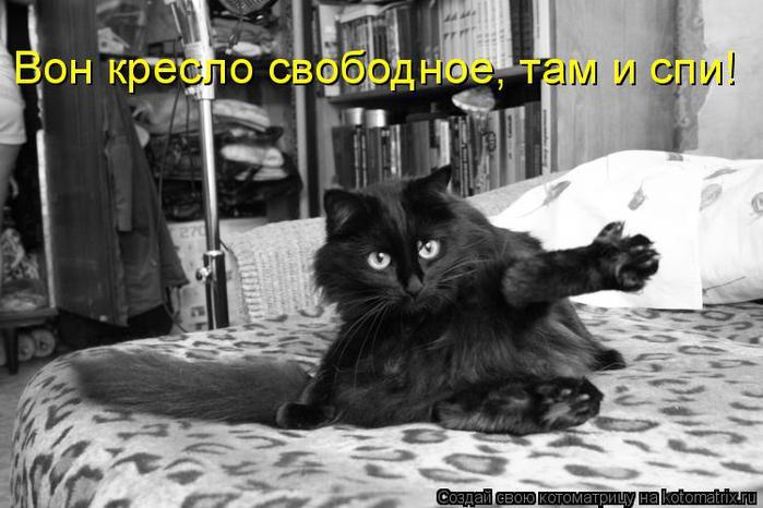 Котоматрица прикольные фото котов 27 (700x466, 55Kb)