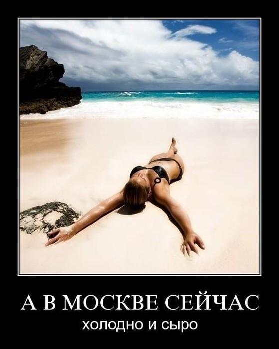 смешные приколы шутки/4171694_motivator (559x700, 61Kb)