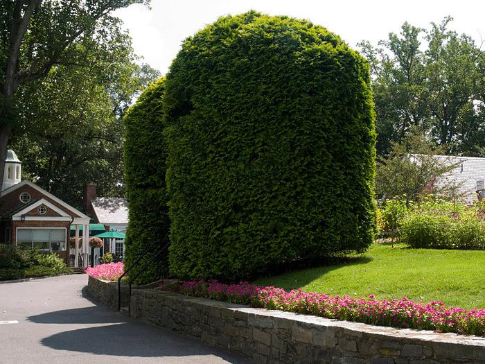 дом-музей Сады Хилвудa, Пенсильвания, США. 36227