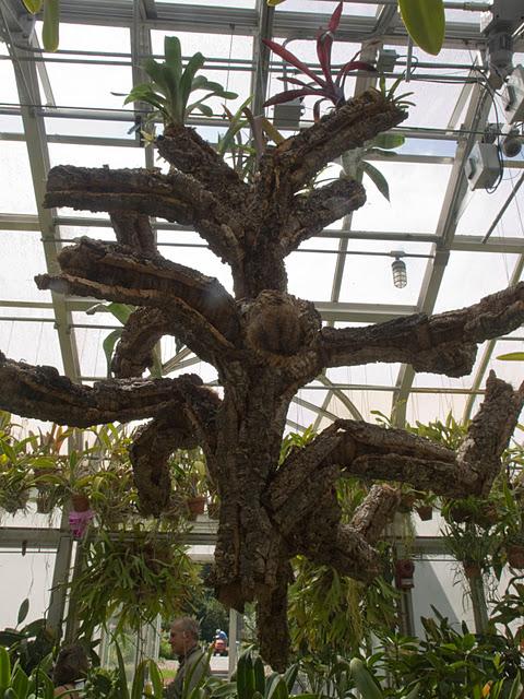 дом-музей Сады Хилвудa, Пенсильвания, США. 67889