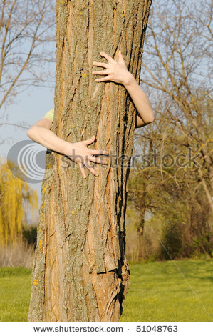 stock-photo-arms-embracing-tree-concept-of-human-care-for-nature-preservation-51048763 (299x470, 93Kb)
