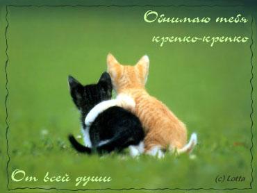 http://img1.liveinternet.ru/images/attach/c/4/82/584/82584535__1711.jpg