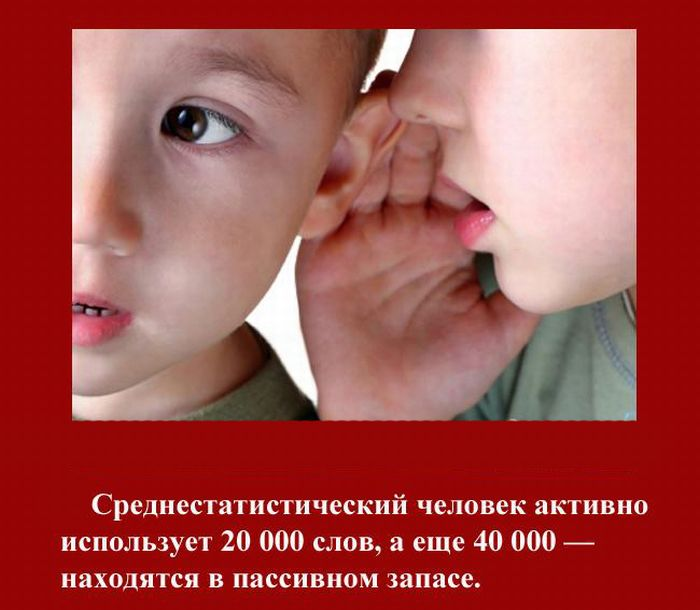 fakti_2011_11 (700x610, 63Kb)